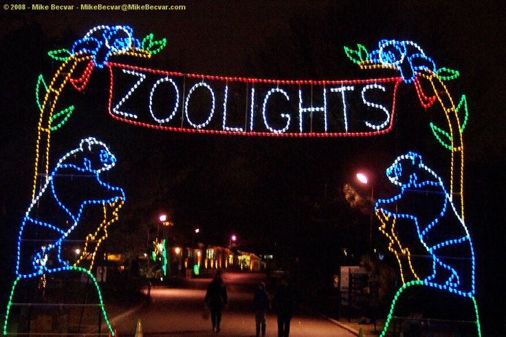 Best 25 Zoo Lights Ideas On Pinterest Holiday Zoo Christmas At  - Phoenix Zoo Christmas Lights