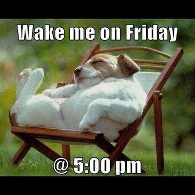 Wake Me On Friday @ 5:00 pm