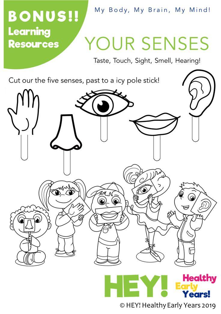 Pin on Free HEY! Human Body Preschool Activities and