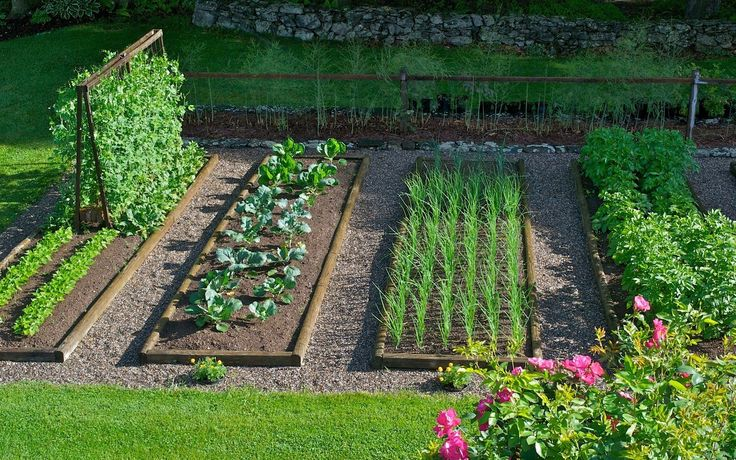 Distant Hill Gardens Vegetable Garden