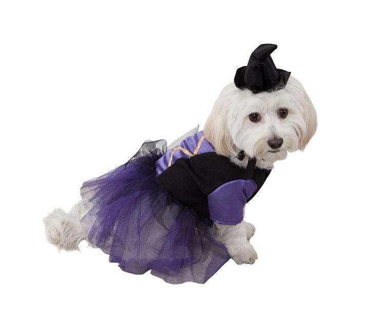 Disfraz de bruja para perro | Comprar online