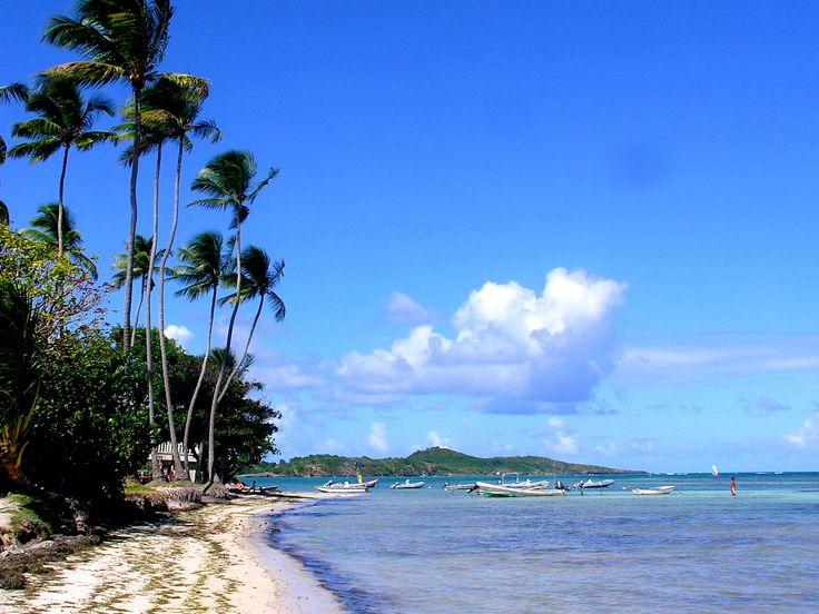 Martinique  Baie de Massy - Massy