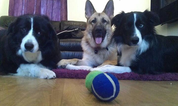 Who wants the ball?