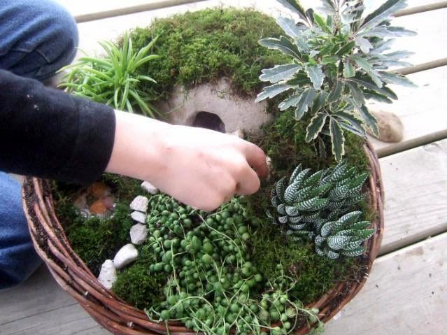 Make an Easter or lent garden. Step by step directions that you complete on different days of holy week.