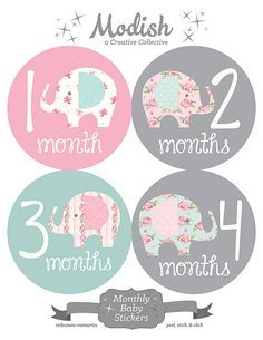 FREE GIFT, Elephant Monthly Onesie Stickers, Baby Belly Stickers, Monthly Baby Stickers Girl, Month by Month, Pink, Grey, Elephants, Girl