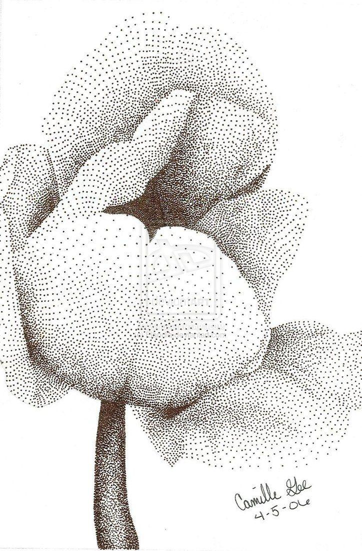 best beeldaspect lijn images on pinterest line drawings