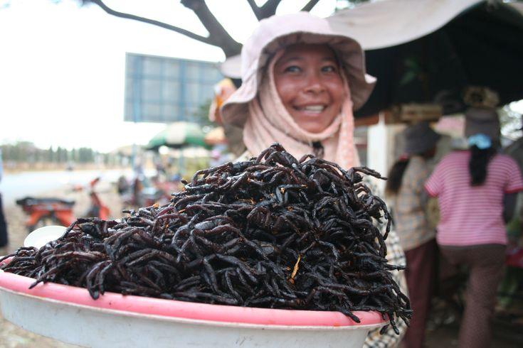 Weirdest Foods in the World - Roomer Blog