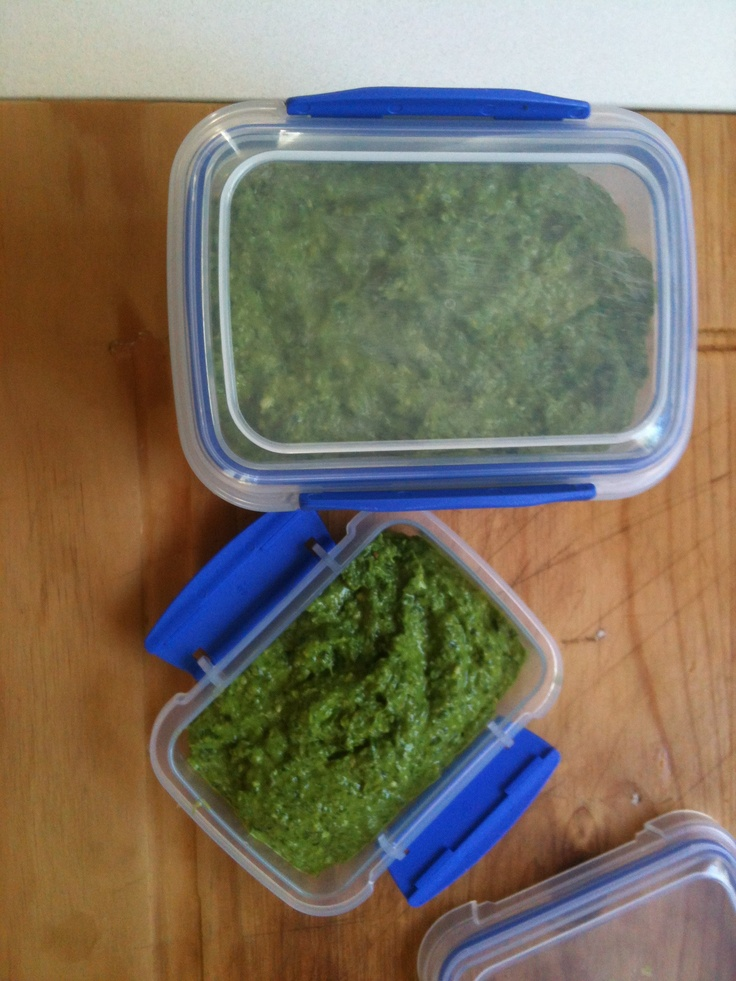 Rocket and basil pesto for the freezer. Made in Thermie. 50g Parmesan & 1 garlic clove, speed 8 for 10 secs. Add 100g toasted pine nuts and handful basil leaves. Weigh in 200g rocket, pushing down as you go. Process speed 6 for 10 secs, scrape down & process again until smooth. Weigh 120g olive oil into jug by sitting it on top of Thermie. Turn to speed 4 & slowly add oil thru lid over about 50 secs to 1 min. Use or freeze.
