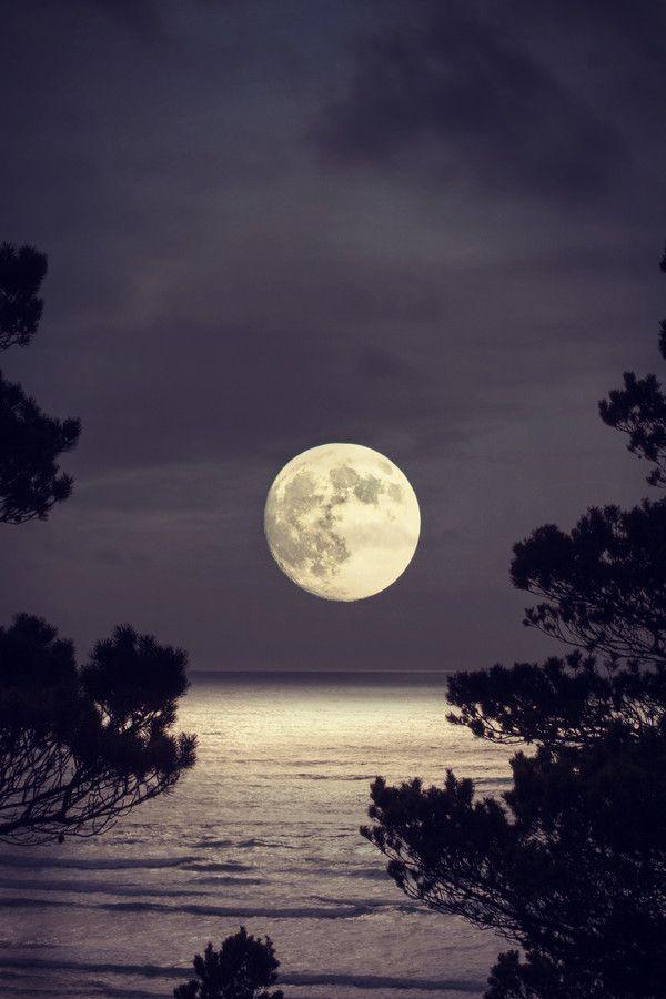 """Super moon"" caught on Oregon Coast"