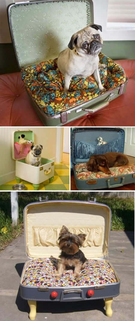 suitcase beds - oh my, these are fun - makes me want another dog just to make one of these!
