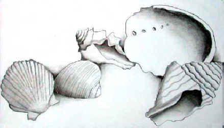 Art Lesson Plan: Contour Drawing - Values - Still Life