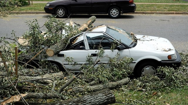 "'Derecho"" Storm: A car sits crushed by a fallen tree on Carrington Road in Lynchburg, Va. on July 1, 2012."