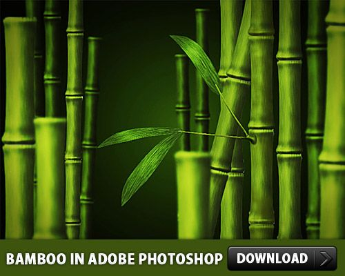 Download Free Bamboo Psd File :: Free Psd Backgrounds at Download Free Psd Files