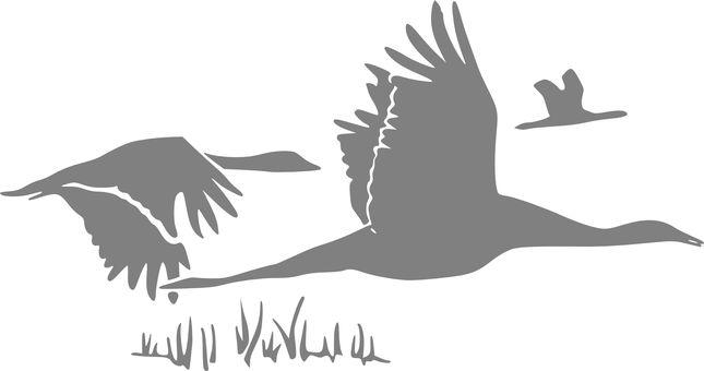 Gans, Ganzen, Vogels, Vliegen