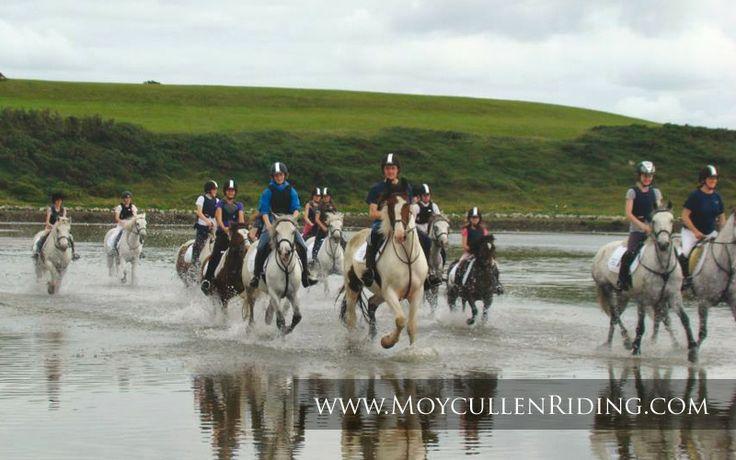 Beach Trek with Moycullen Riding Centre