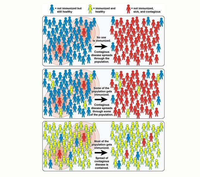 NOVA - Official Website | What is Herd Immunity?
