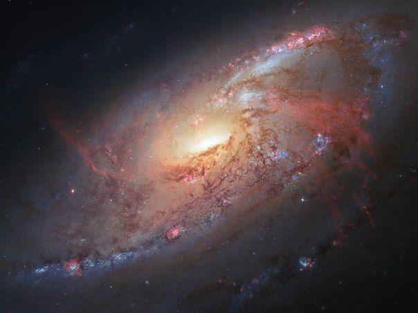 На расстоянии чуть более 20 млн световых лет от Земли в созвездии Гончие Псы находится большая и яркая спиральная галактика М 106 / Astro Analytics