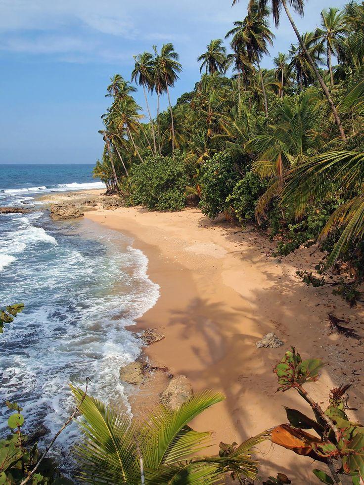 Puerto Viejo de Talamanca, Limon es una playa con actividades subacuáticas. Hay flora y fauna bonitas.
