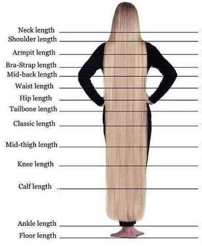 Cornrow-Rachel in 2020   Hair length chart, Long hair ...