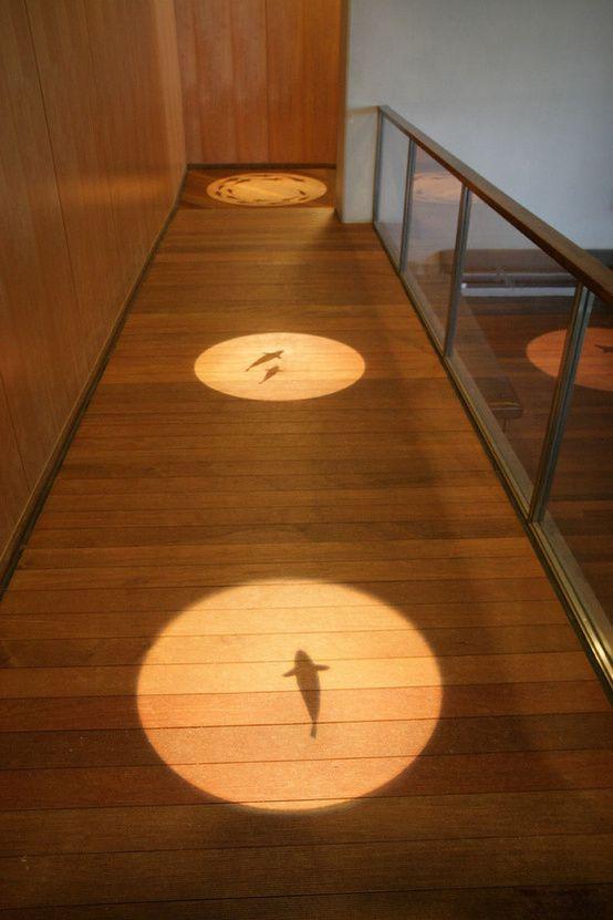 日本山梨県立富士湧水の里水族館 森の中の水族館 - 「床に照らされた魚の影絵がかわいい!」