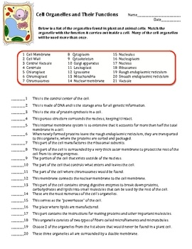 Cell Organelles (Structure and Function) Matching Worksheet - Cells. This is a worksheet on cell organelles and their functions. There are 45 questions set up in a matching format. All questions deal with either the structure of the organelle or the functions of the organelles. Students will choose from a word bank of 21 organelles. $