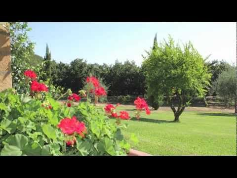 Agriturismo - B&B La Valle di Vico - YouTube
