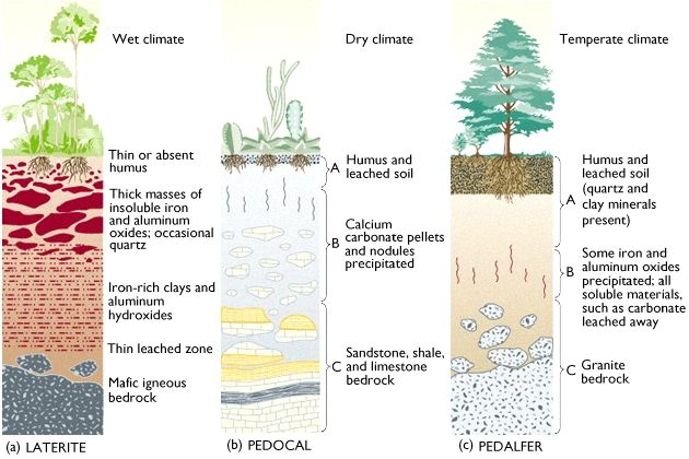 Soil types soil types gardening seeds soils bulbs for Three uses of soil