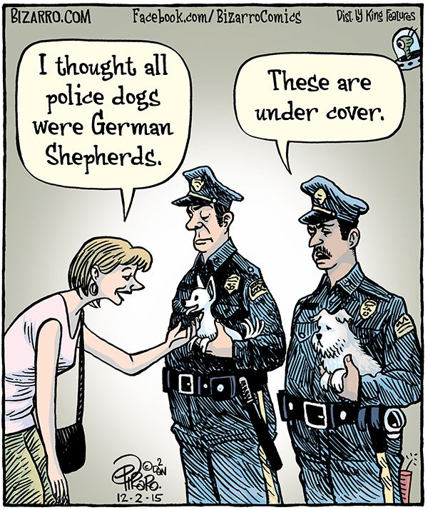 undercover K-9s - Bizarro panel by Dan Piraro December 2, 2015 (600×714)