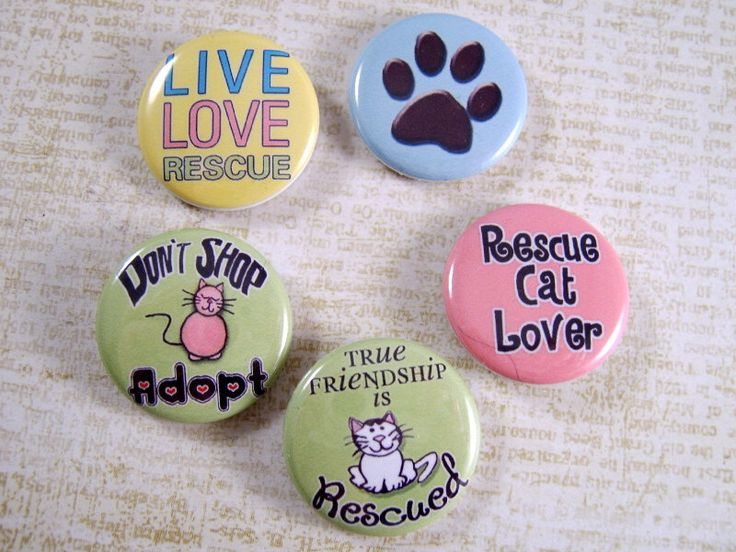 "Rescue Cat Pins, Rescue Cat Magnets, Fundraiser Item, Adopt,  Available in 1"" Flats, Hollows, Cabs, 12 ct. by TheSteamPunkCatSlave on Etsy https://www.etsy.com/listing/185563333/rescue-cat-pins-rescue-cat-magnets"