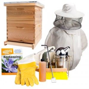 Bee Hive Kits - find the best of the best and get your BUZZ on!
