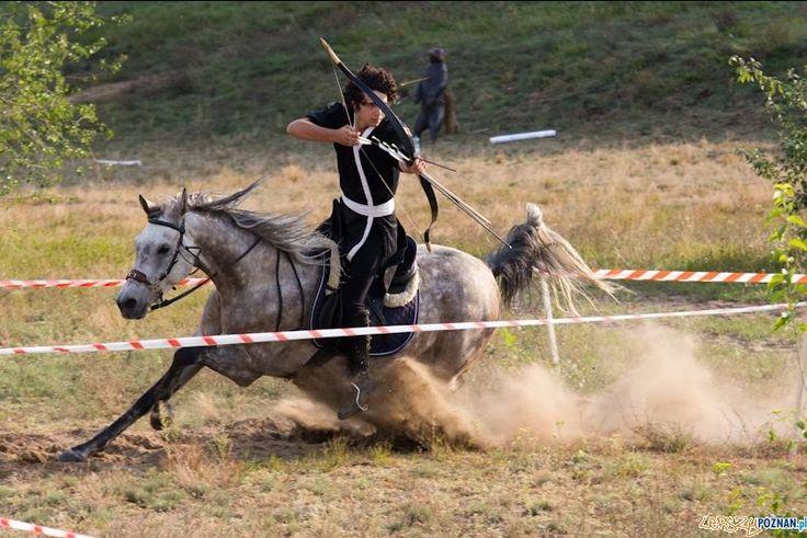 Tir à l'arc à cheval                                                       …