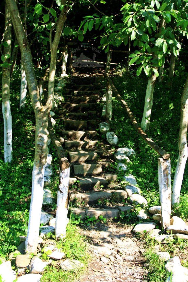 easttowestadventuresStep into life 🍃🌲أمشي خطوة خطوة لحياة جميلة #easttowestadventures #forestbathing #greenleaves #green #azerbaijani #azerbaijan #quba #kuba #baku #roadtrip #steps #stairs #intothewoods #hiddenpath #adventure #unexplored #dubai #dubaitraveller #uaeblogger #dubaitag #forest #relaxing #goodtimes