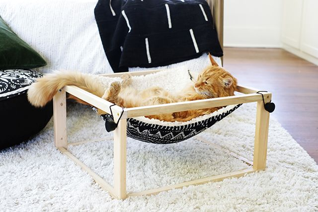 Your Cat is Going to Lurve This Modern DIY Kitty Hammock | Diy cat ...