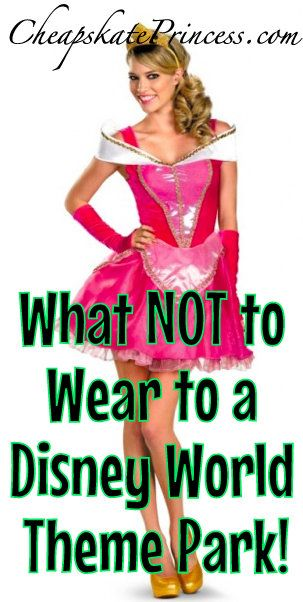 1c5d0927f2c What You Can NOT Wear to Disney Theme Parks  A Cheapskate Princess ...