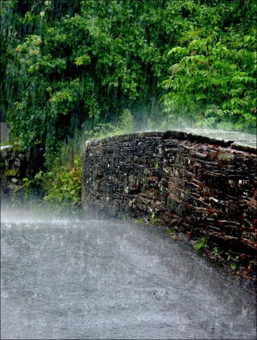 I would love to be there with the rain bouncing do…
