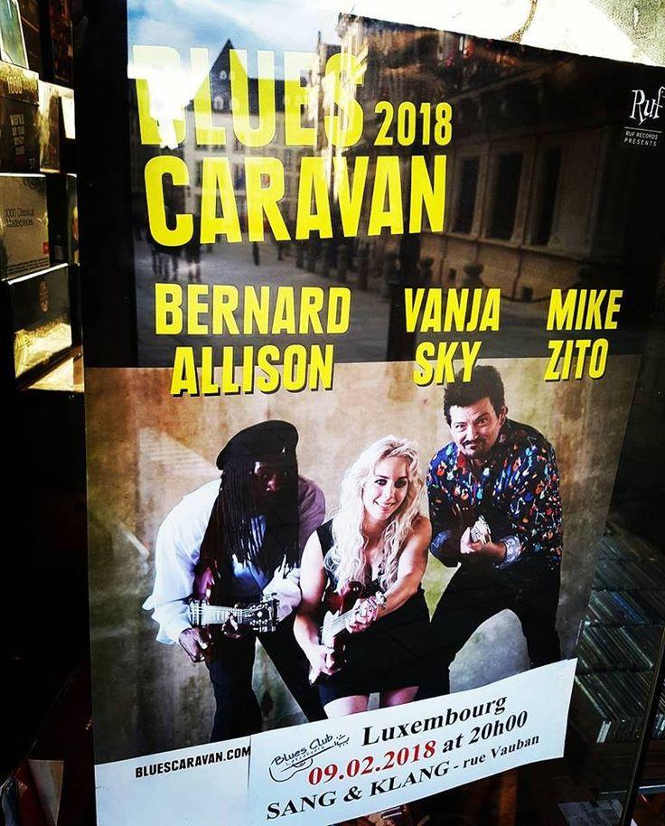 CD BUTTEK NEWSLETTER #52 from December 29, 2017 (New Concert Tickets: BLUES CARAVAN 2018, Chris Cain & Luca Giordano Band,..)