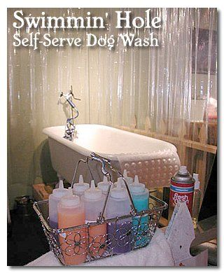 445 best dog park images on pinterest dog daycare doggies and self serve dog wash solutioingenieria Image collections