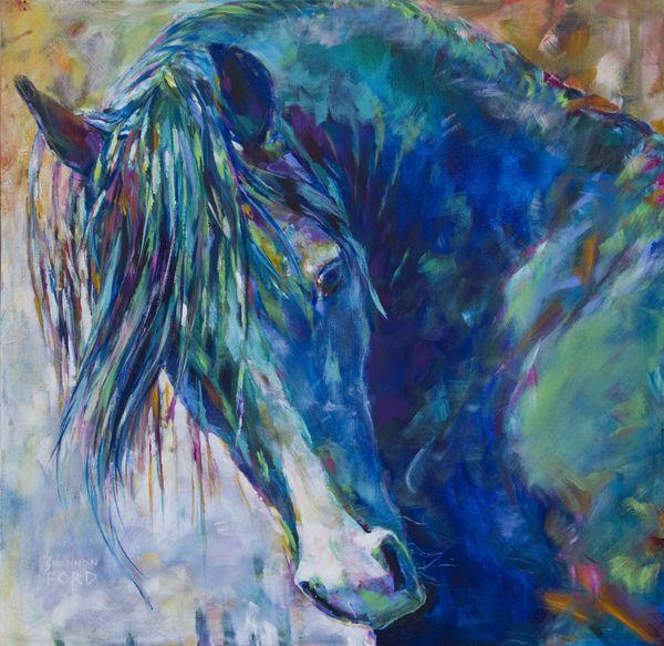 the Beautiful CMK Arabian Stallion Aul Jesse James of Warren Park Stud by Shannon Ford equine art
