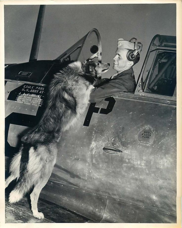 "Mascot dog ""Co-Pilot"" looking for a ride with an aviation cadet Oliver Foster Jr. at Eagle Pass Army Air Field in Texas. 1943"