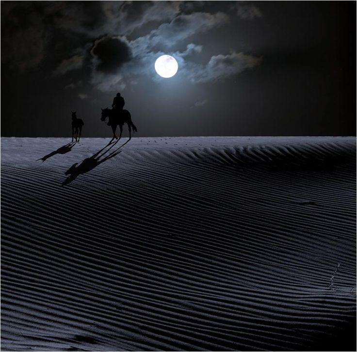 Cavaleiro da meia-noite.                                                                                                                                                                                 Mais
