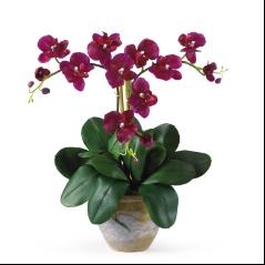Triple Mini Phalenopsis Silk Orchid Arrangement Wine