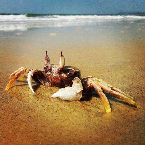 Paradise Beach - Mapcarta