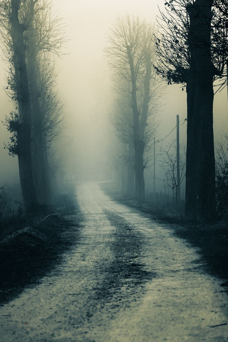 Lonely road by Andrea Fraccaroli - Photo 133570803 - 500px