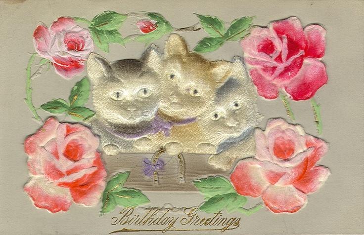 Vintage Cat Postcard 054