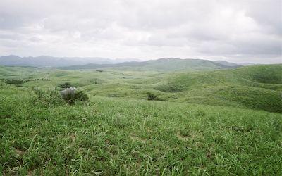 Landscape of Akiyoshidai, Yamaguchi Japan. #nature #landscape #akiyoshidai #japan #travel