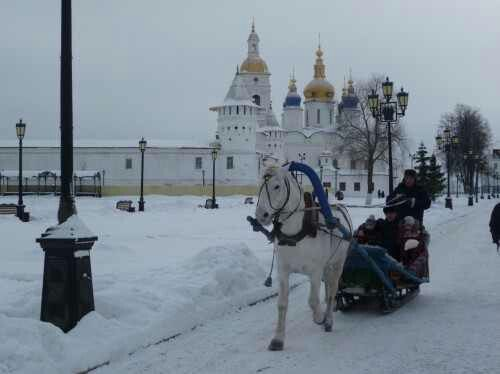 A sleigh ride is a treat. Most people dont have a chance to see a horse in the streets of my city
