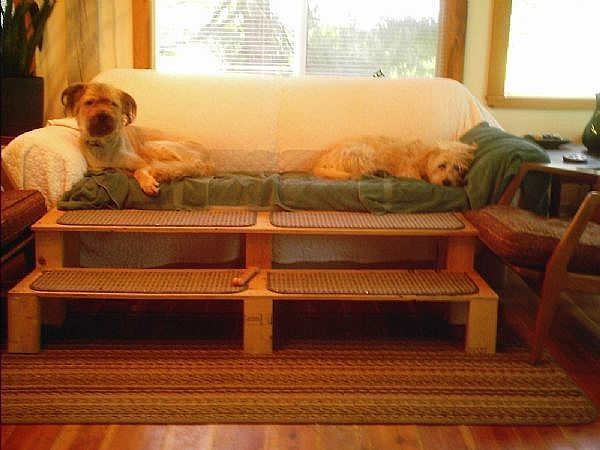 How To Build An 8 X 4 Chicken Coop Beds Dog Steps And Dogs