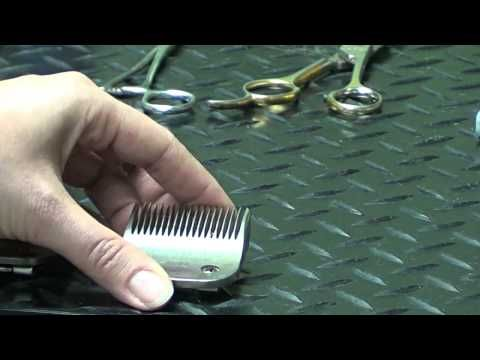 Pet Grooming Hand Tools - Do-It-Yourself Pet Grooming