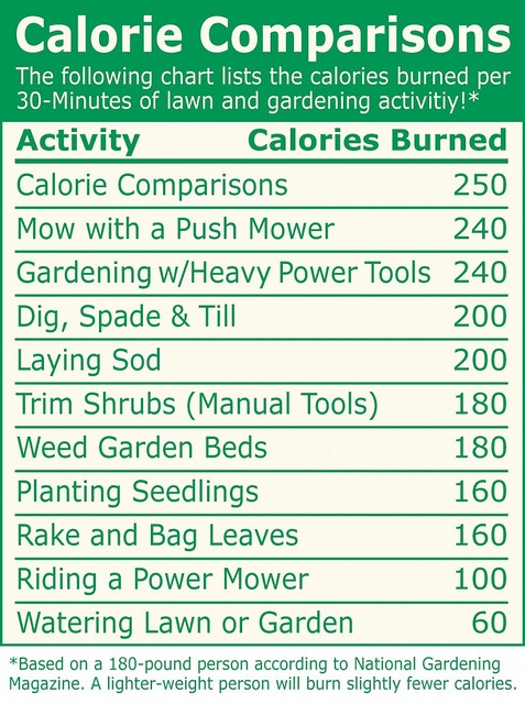 Calorie chart see how many calories you burn while doing How many calories do you burn doing yard work