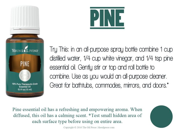 Pine essential oil has a refreshing and empowering aroma. When diffused, this oil has a calming scent.